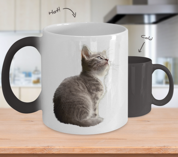 Cute Kitten Color Changing Coffee Mug 11 oz.
