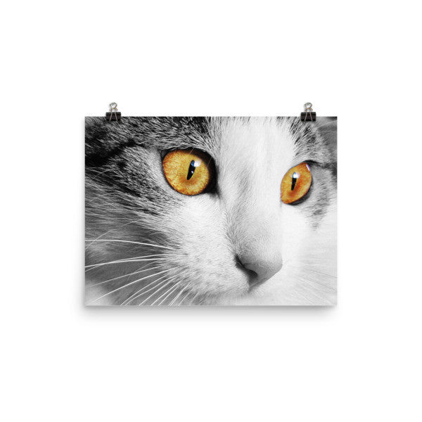 Yellow Cat Eyes Wall Poster - BinXzay