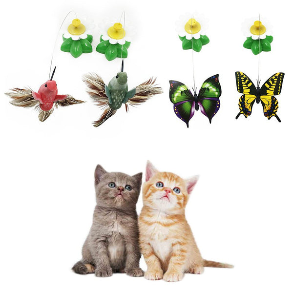 Electric Rotating Cat Toy - Flower Butterfly Birds Teaser - BinXzay