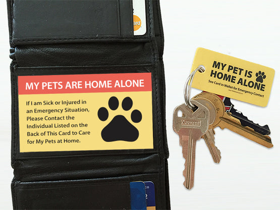 Emergency Pet Key Ring Tag and Wallet Card Set
