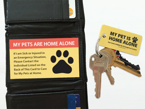image regarding My Dog is Home Alone Card Printable identified as Crisis Doggy Keyring Tag