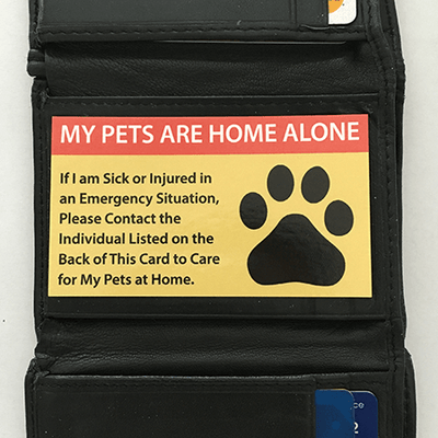 Pet Care Cards for Pets