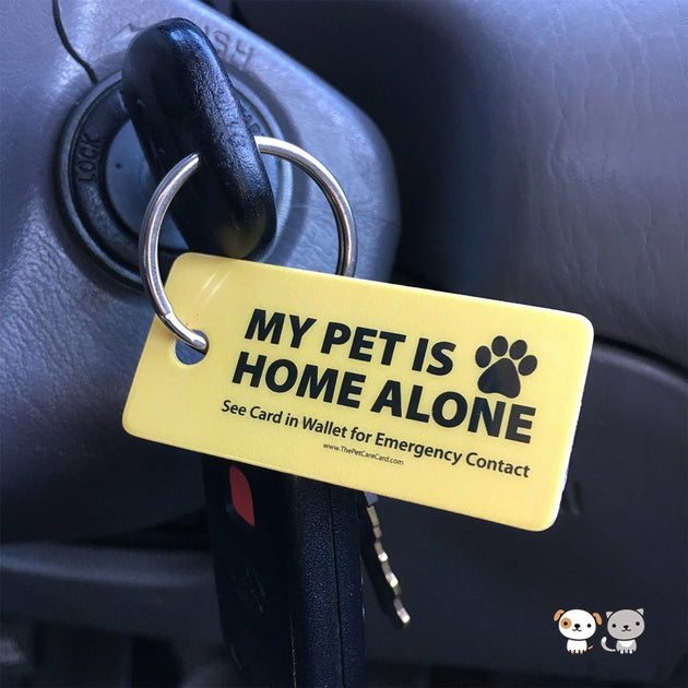 image regarding My Dog is Home Alone Card Printable identified as Unexpected emergency Canine Keyring Tag