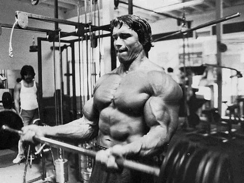 Arnold training biceps