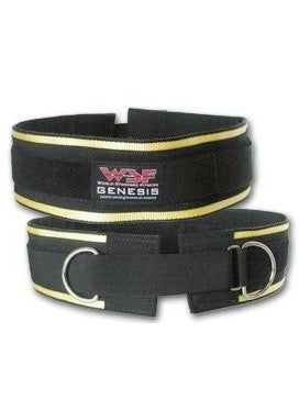 World Standard Fitness  Genesis Universal Lifting and Dipping Belt