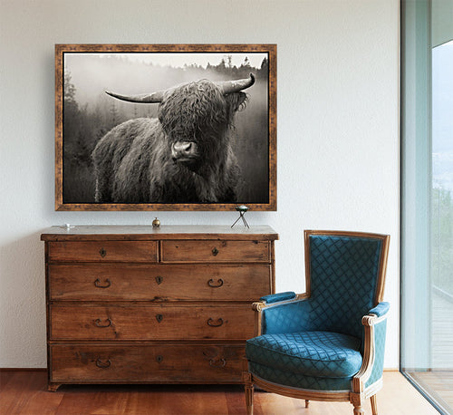 Highland Cow | B & W | Framed