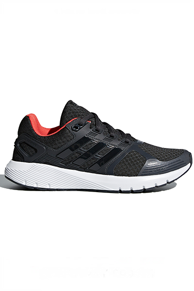 ADIDAS DURAMO 8 WOMENS WITH FREE CHAMPION LOW CUT 3 PACK SOCK WOMENS- AK137 <br> CP8750,- Jim Kidd Sports