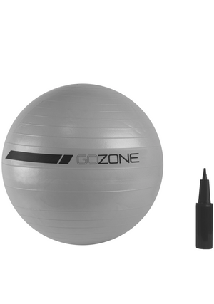 GOZONE 65CM EXERCISE BALL WITH PUMP <br> GZE2075