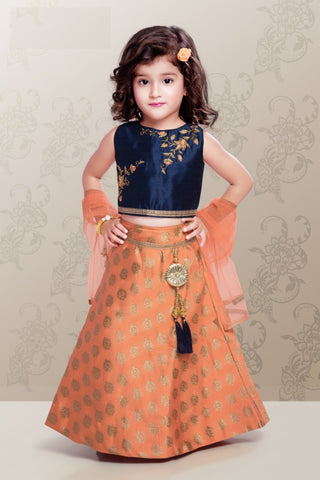 Navy Blue and Peach Lehenga Choli
