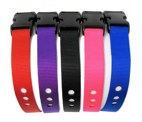 "1"" Replacement Strap - Purple"