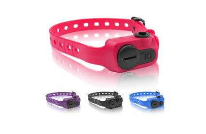 Stop Dog Barking with iQ No Bark Collar and Strap Attachment