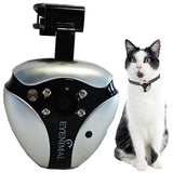 Cat Dog Pet POV Video Camera  NanoCam by Eyenimal Night Vision- *Free Shipping*