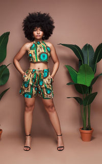 Kamisha High Waisted Shorts