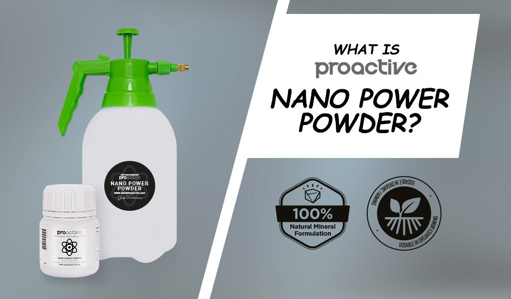 What is ProActive Nano Power Powder?