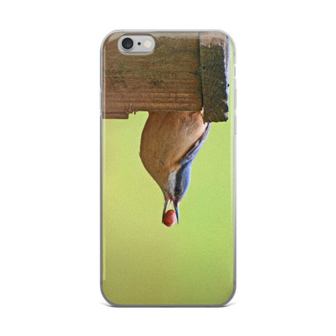 iPhone case with nuthatch