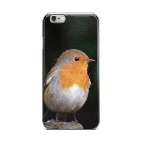 iPhone case Robin