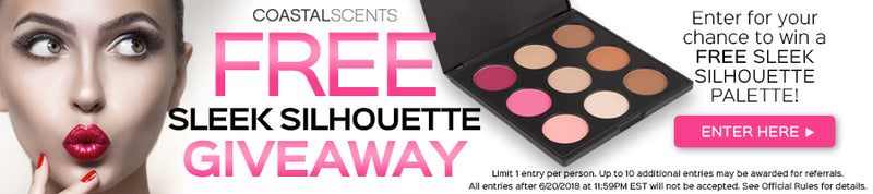 Enter to win a FREE Sleek Silhouette Palette!