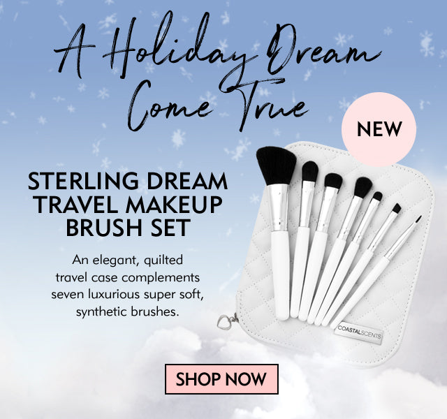 Sterling Dream Brush Set