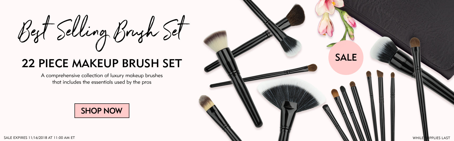 22 Piece Makeup Brush Set Sale