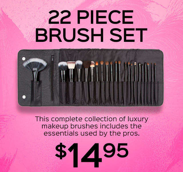 22 Piece Brush Set Now Only $14.95