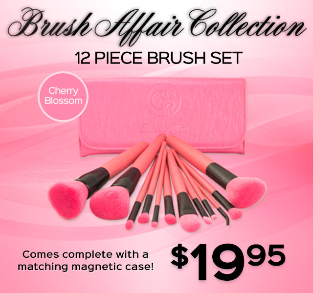 Brush Affair Collection 12 Piece Brush Set $19.95