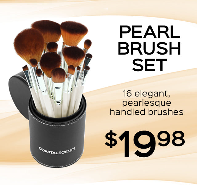 Pearl Brush Set Now Only $19.98