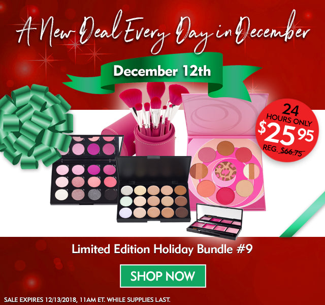 A New Deal Every Day in December- Limited Edition Holiday Bundle #9