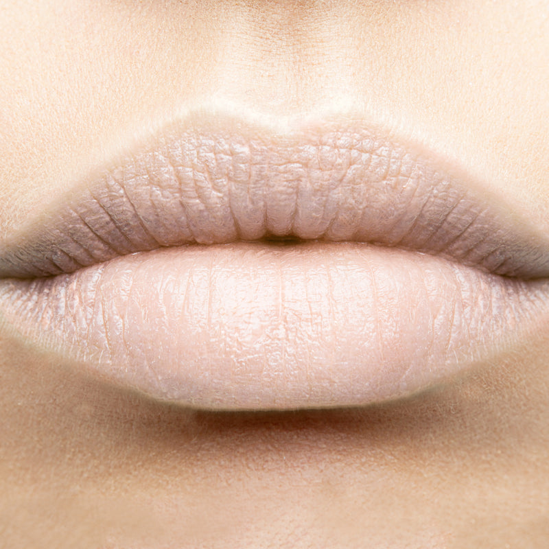 Morning Frost Lipstick Color