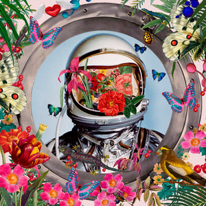 David Krovblit - Astro Birds & Lizards, Porthole Series, 2020