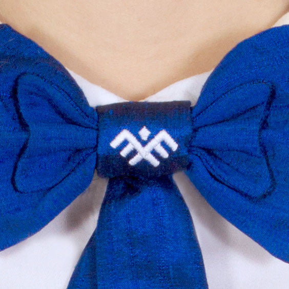Blue Raw Silk Bow Tie TRIIN
