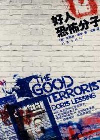 The Good Terrorist (Simplified Chinese)