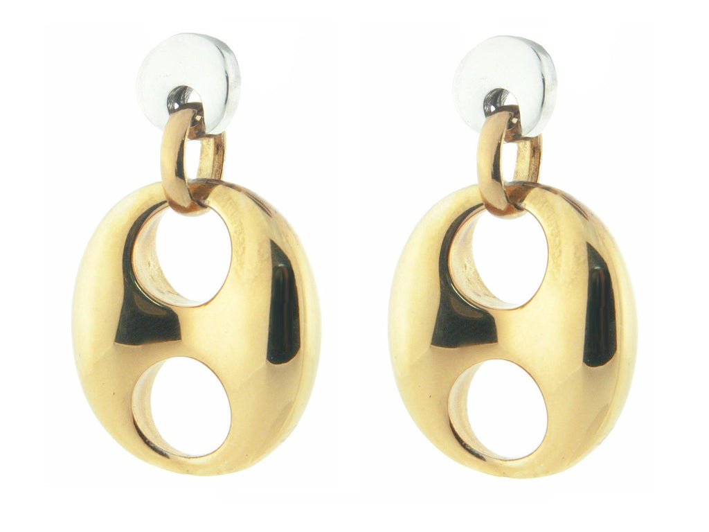 Polished Golden Marine Link Earrings