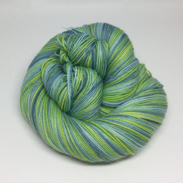 Earth Day Four Stripe Self Striping Yarn