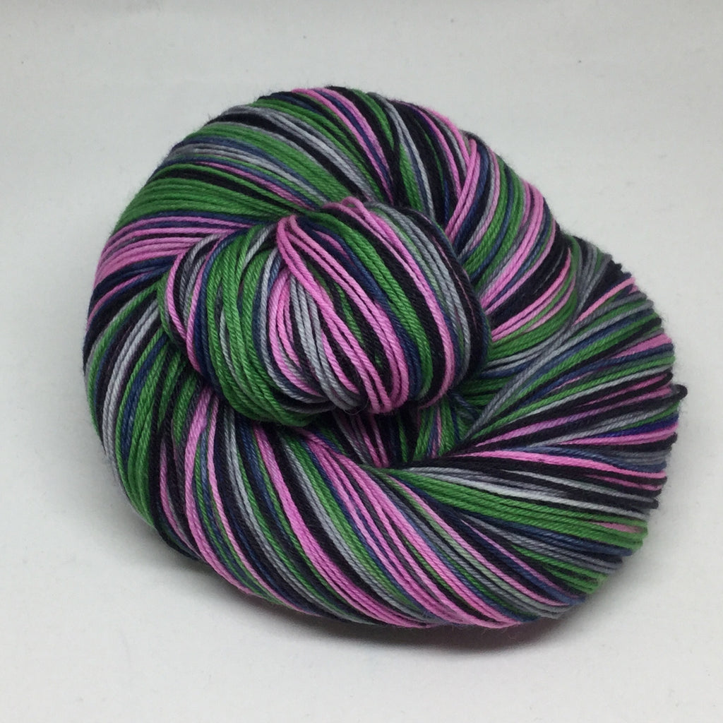 Public Gardens Five Stripe Self Striping Yarn
