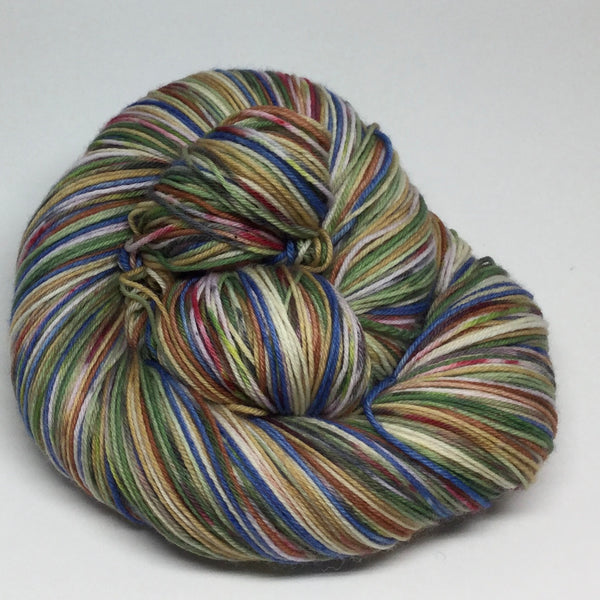 ZomBody Yogi and Boo Boo Eight Stripe Self Striping Yarn