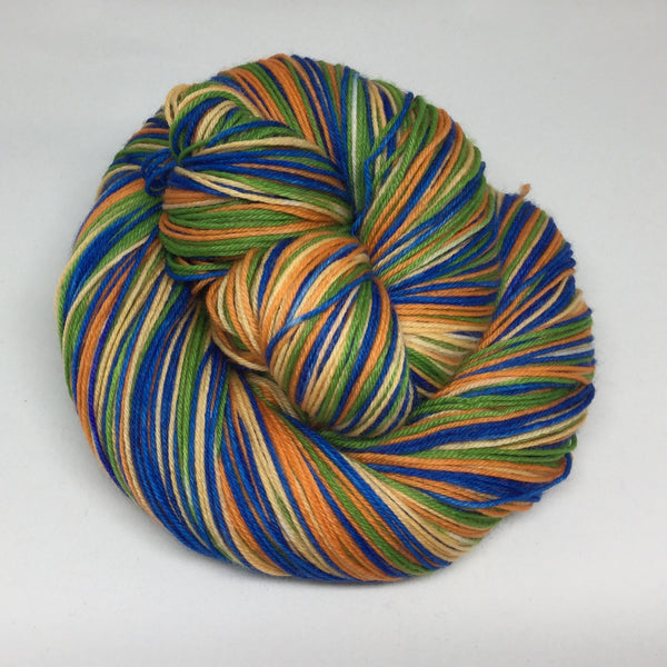 Bird of Paradise Four Stripe Self Striping Sock Yarn