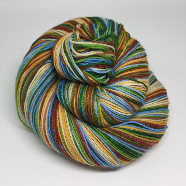 Acadia National Park Six Stripe Self Striping Yarn
