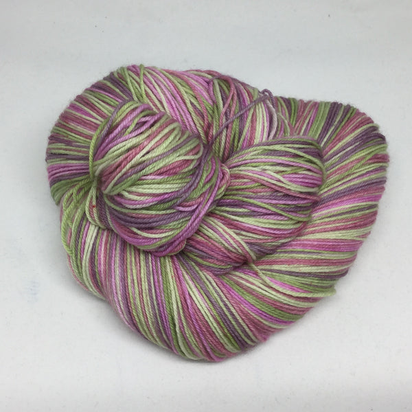 Succulents Six Stripe Self Striping Yarn