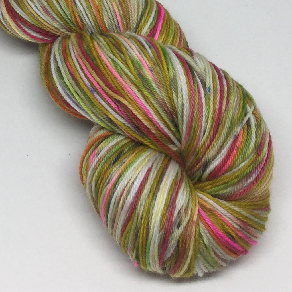 Sasha ZomBody Velour Four Stripe Self Striping Yarn