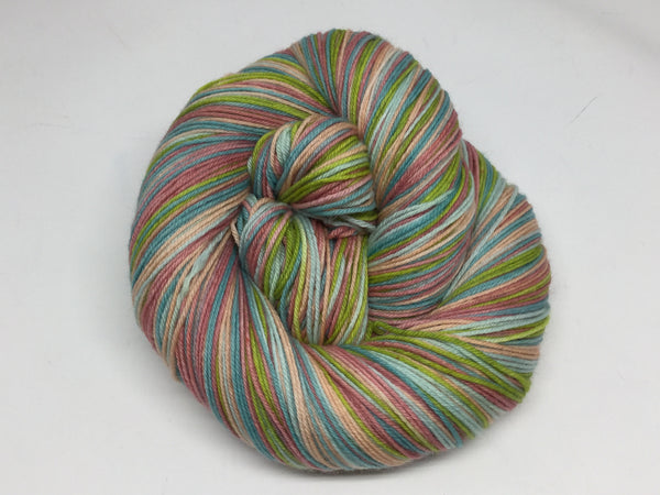 National Parks Five Stripe Self Striping Yarn