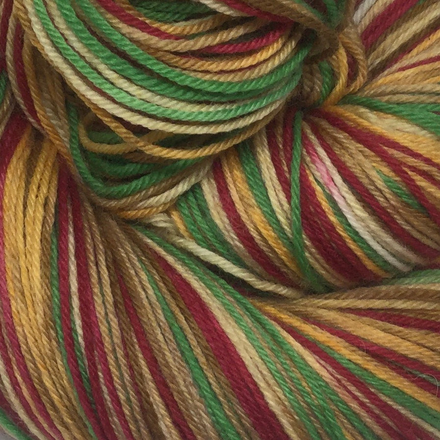 Leftover Turkey Sandwich Five Stripe Self Striping Sock Yarn