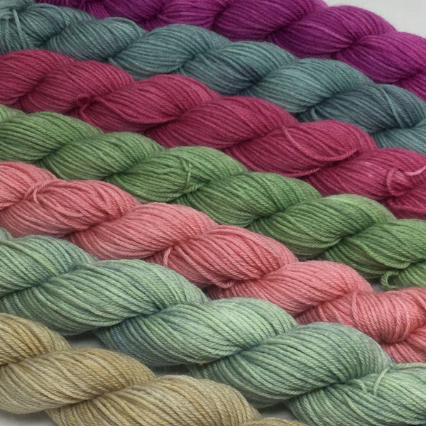 Sonoran Mini Skein for Toes and Heel Set Approx. 700 yards