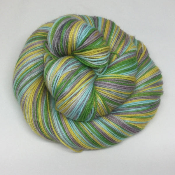 Moraine Lake Five Stripe Self Striping Sock Yarn