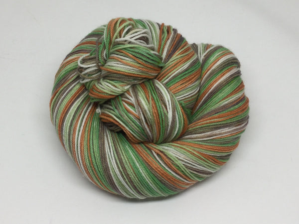 Wind in the Willows Five Stripe Self Striping Yarn
