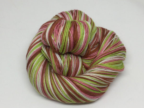 Prodigal Summer Four Stripe Self Striping Yarn