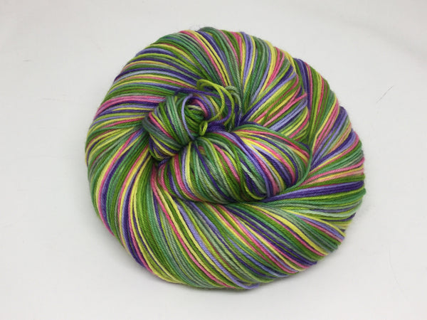 Ferngully Eight Stripe Self Striping Yarn