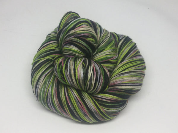 Zombody is a Wicked Witch Four Stripe Self Striping Yarn