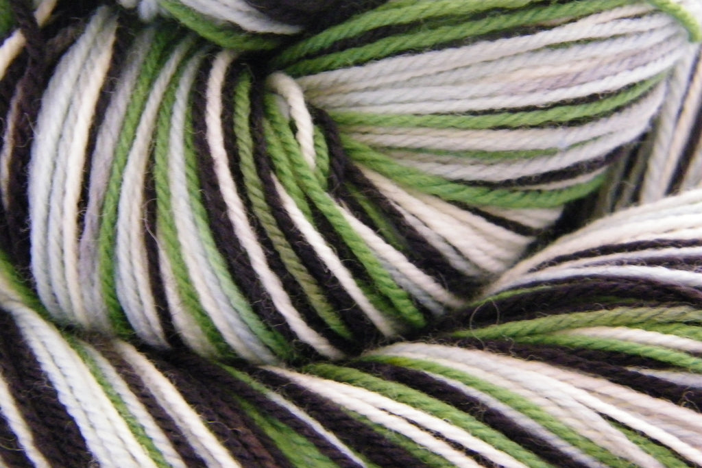 Baa Baa Black Sheep Four Stripe Self Striping Yarn
