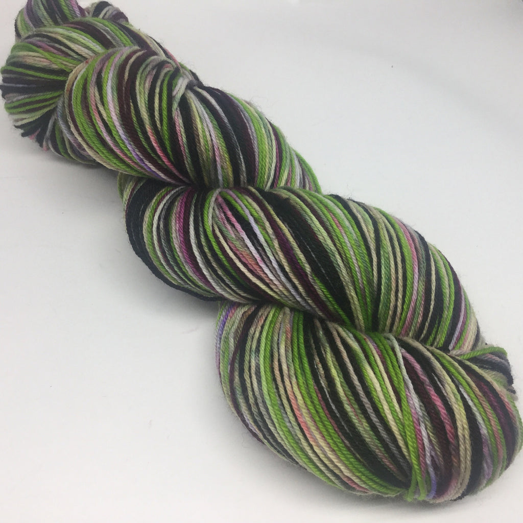 Zombody is Off to See the Wizard SixStripe Self Striping Yarn