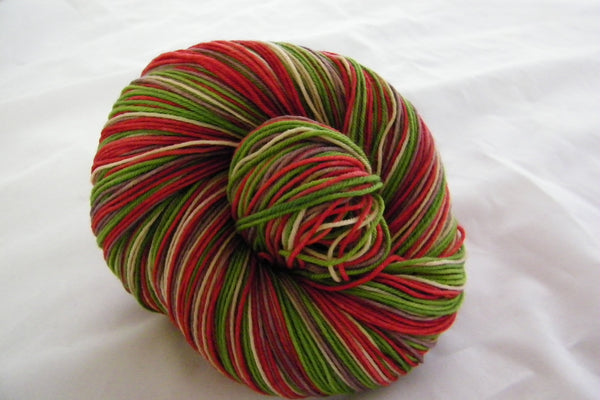 Apple Pie Four Stripe Self Striping Yarn